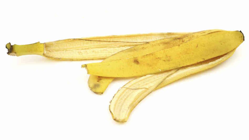 banana katharisma spiti