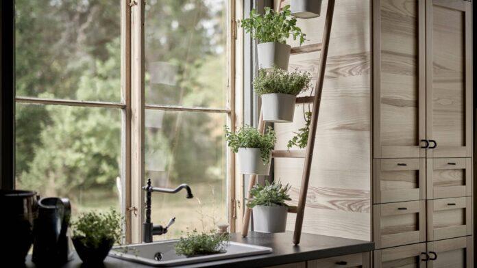 Αρωματικά Φυτά στην κουζίνα